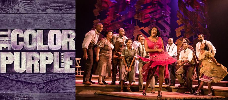 The Color Purple at Whitney Hall
